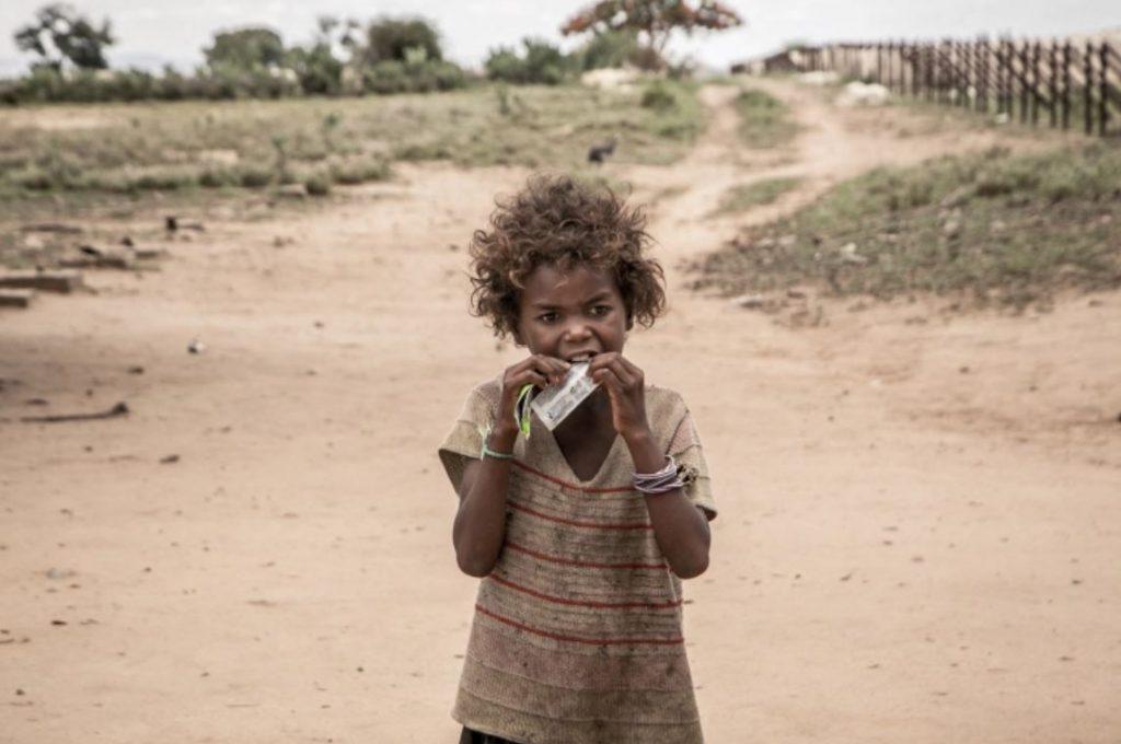 ชาวมาลากาซี กินใบไม้และตั๊กแตนเพื่อความอยู่รอด การหายไปเกือบหมดของแหล่งอาหารทำให้เกิด ภาวะฉุกเฉินทางโภชนาการที่สมบูรณ์ ทางตอนใต้ของมาดากัสการ์