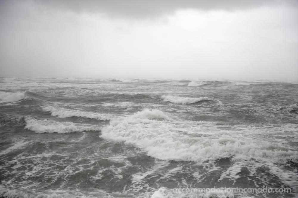 Nicholas กระทบชายฝั่งเท็กซัสเมื่อต้นวันอังคารเนื่องจากพายุเฮอริเคนและทิ้งฝนมากกว่า 1 ฟุต (30.5 เซนติเมตร) ไปตามพื้นที่เดียวกันที่พายุเฮอริเคน